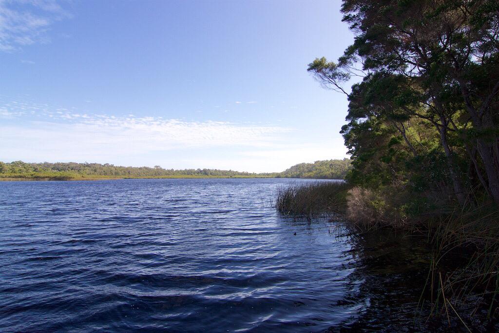 Hawke National Park   park   Lake Rd, Yeagarup WA 6260, Australia   0897761207 OR +61 8 9776 1207
