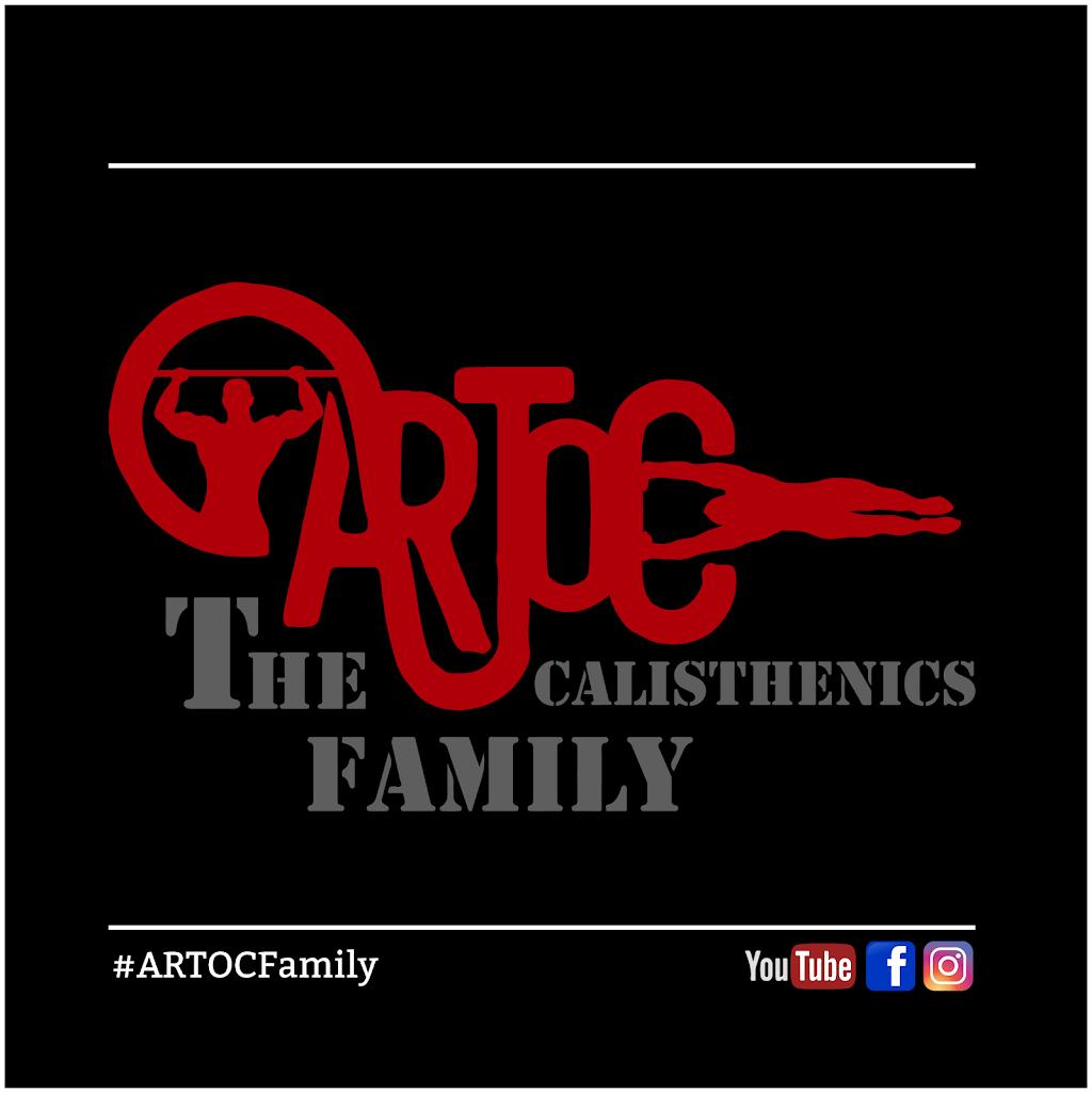 ARTOC Family - The Calisthenics Community | health | 10A Victoria St, Revesby NSW 2212, Australia | 0405205507 OR +61 405 205 507
