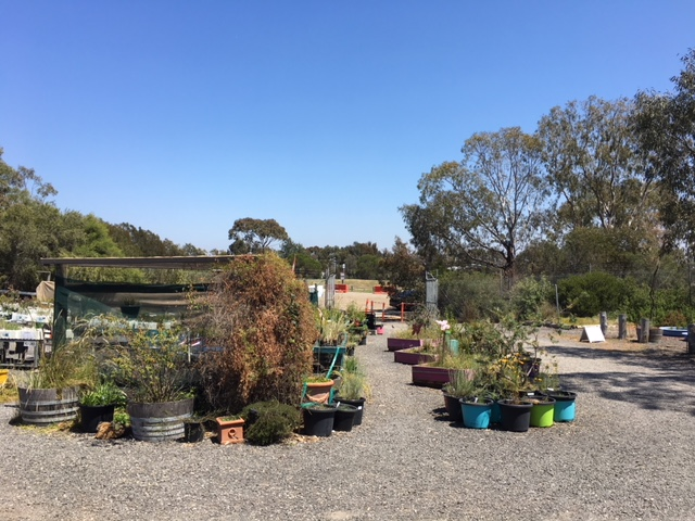 Newport Lakes Native Nursery | point of interest | 2 Lakes Dr, Newport VIC 3015, Australia | 0393910044 OR +61 3 9391 0044