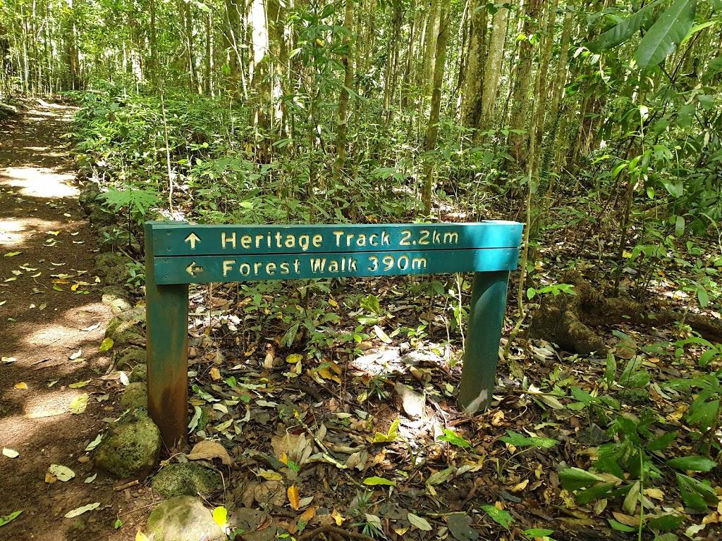 Wongabel State Forest Walking tracks   museum   National Route 1, Atherton QLD 4883, Australia