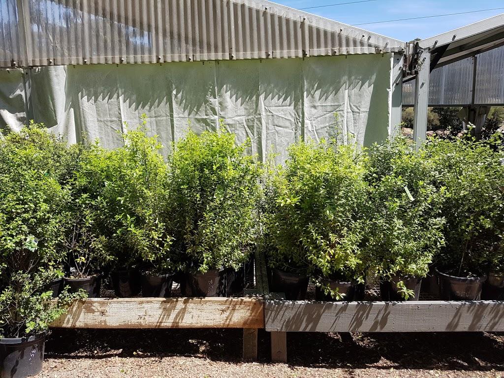 Aumanns Building and Garden Supplies | store | 95-103 Heidelberg-Warrandyte Rd, Templestowe VIC 3106, Australia | 0398464877 OR +61 3 9846 4877