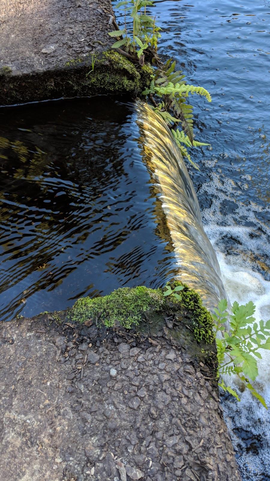 Gold Creek Reservoir Carpark | park | 660 Gold Creek Rd, Brookfield QLD 4069, Australia | 1800771497 OR +61 1800 771 497