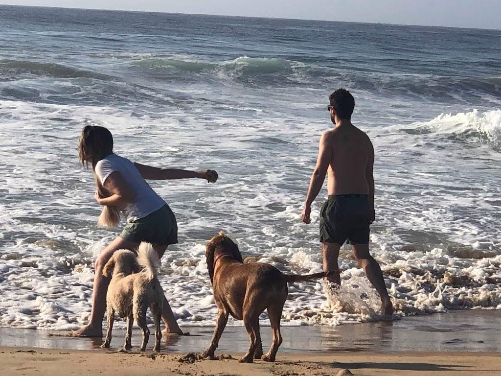 Dog Friendly Off-Leash Beach Area | museum | Unnamed Road, Tathra NSW 2550, Australia