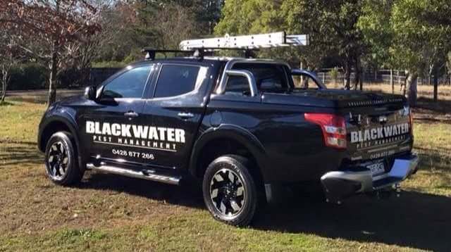 Blackwater Pest Management - Termite & Pest Control Hawkesbury   home goods store   1/24 Bosworth St, Richmond NSW 2753, Australia   0428877266 OR +61 428 877 266