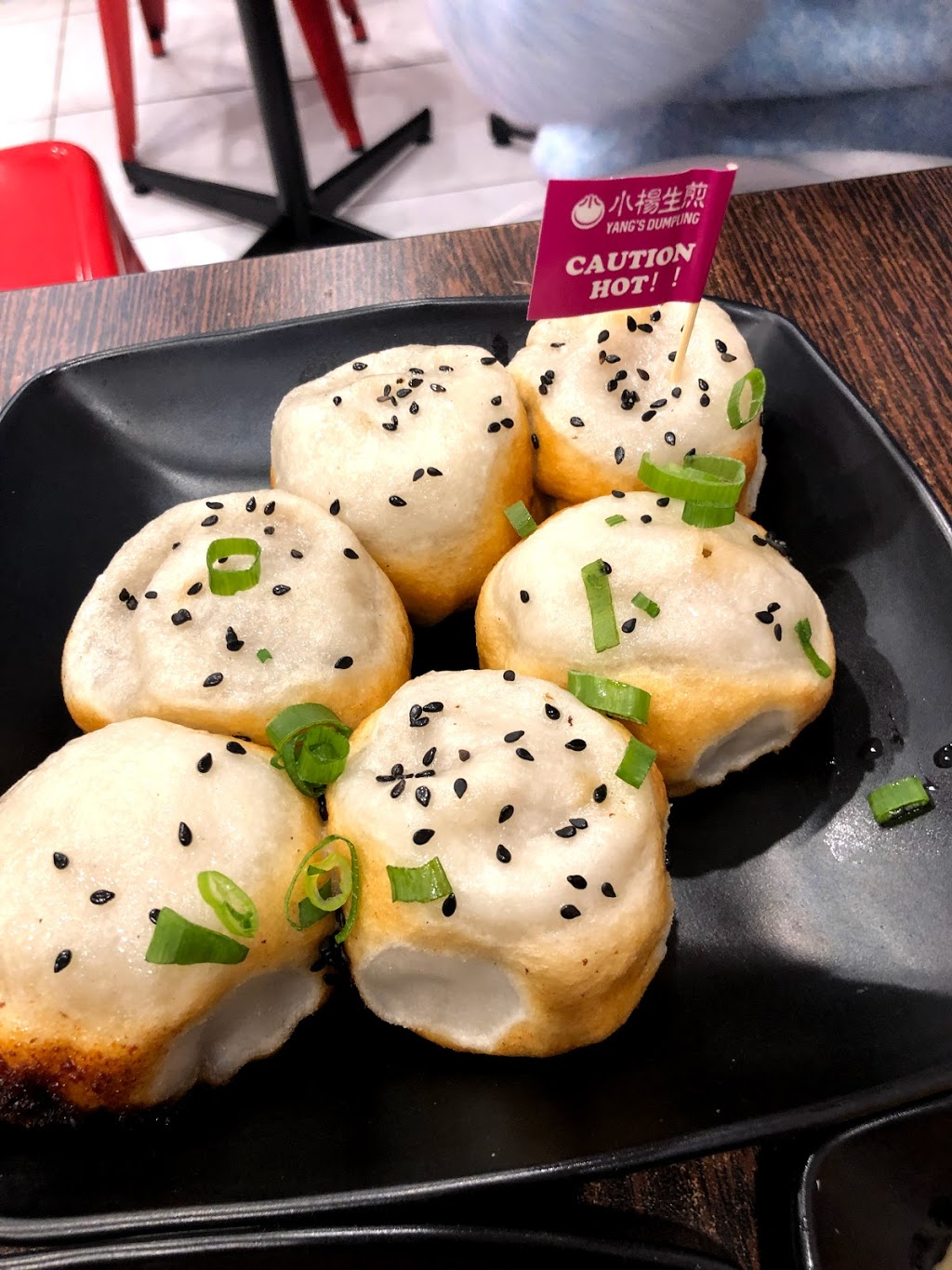 Yang's dumpling | meal takeaway | 1025 Whitehorse Rd, Box Hill VIC 3128, Australia | 0398901824 OR +61 3 9890 1824