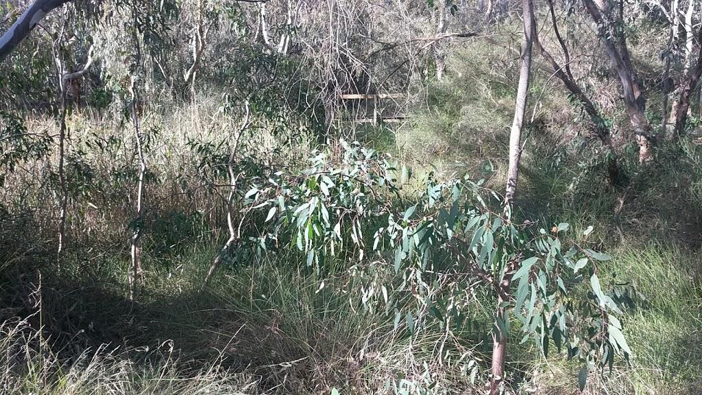 Yollinko Wetlands | park | Newtown VIC 3220, Australia
