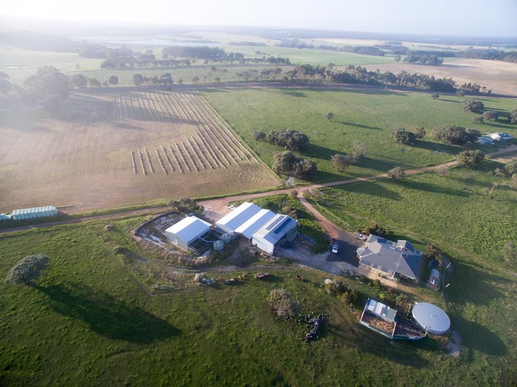 Leeuwin kennels   lodging   828 Brockman Hwy, Karridale WA 6288, Australia   0403252228 OR +61 403 252 228