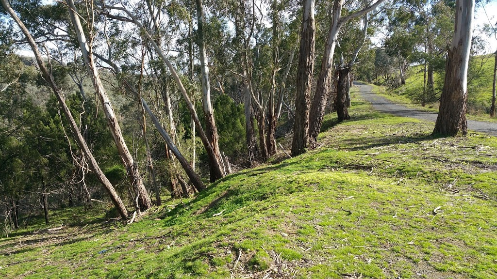 Pretty Hill Reserve | park | Kangaroo Ground VIC 3097, Australia