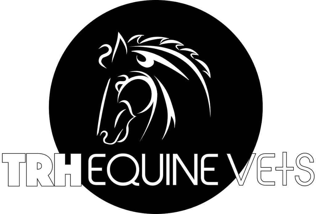 TRH Equine Vets | veterinary care | 130 Tarata Rd, Guanaba QLD 4210, Australia | 0417292705 OR +61 417 292 705