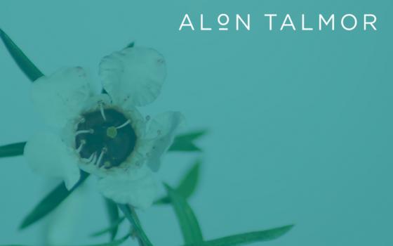 Dr Alon Talmor | doctor | 767 Hawthorn Rd, Brighton VIC 3187, Australia | 0395627455 OR +61 3 9562 7455