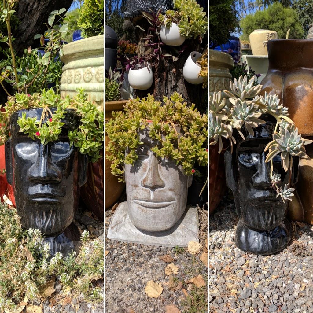 C.D.L.S. Paramount Pots   store   9 Paramount Rd, West Footscray VIC 3012, Australia