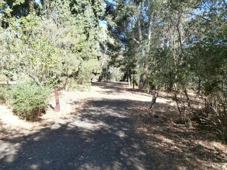 Frome Reserve | park | 1 Park Ave, Urrbrae SA 5064, Australia