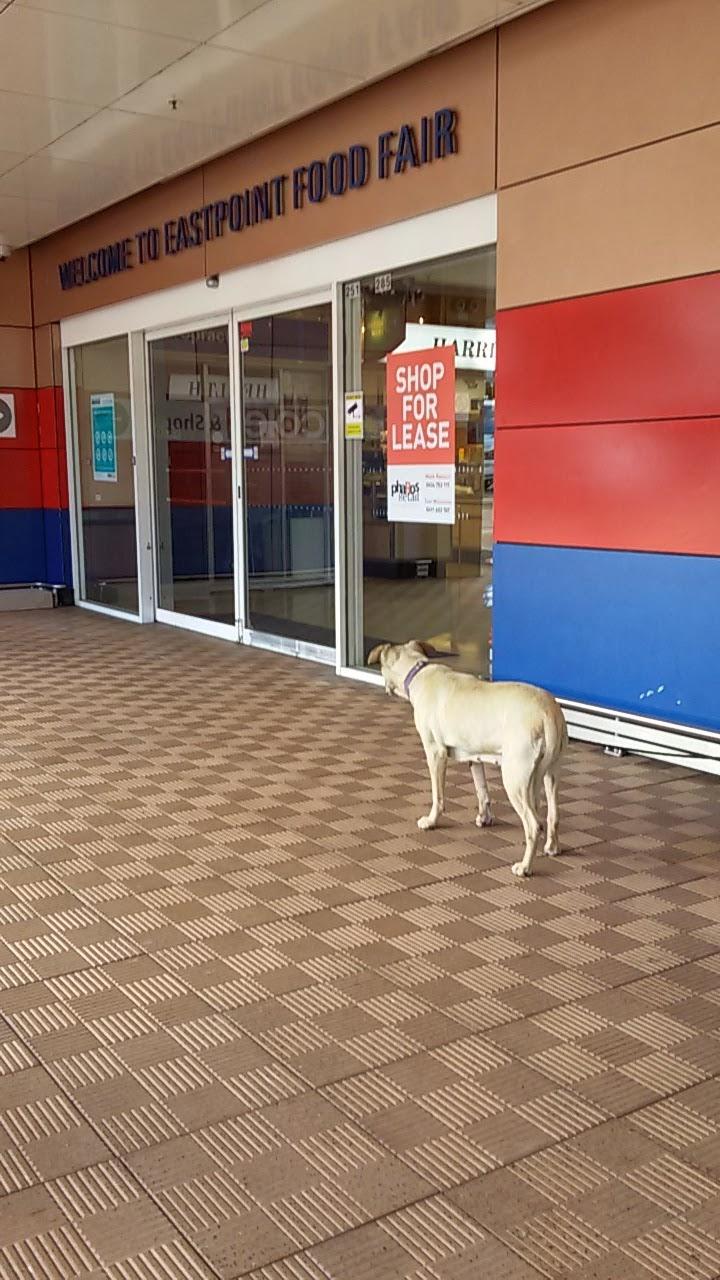 Eastpoint Food Fair   shopping mall   235-287 New South Head Rd, Edgecliff NSW 2027, Australia   0448989424 OR +61 448 989 424