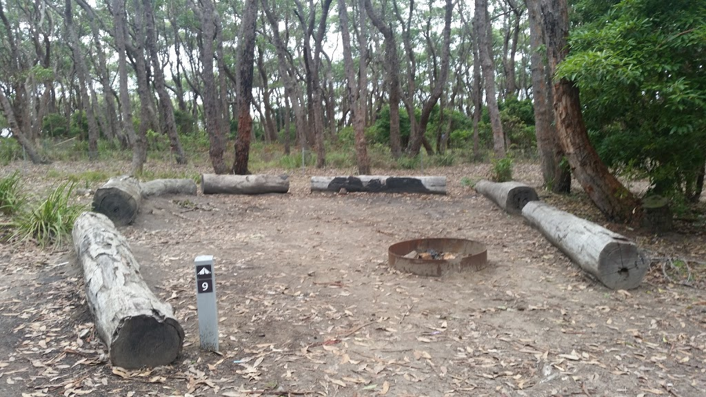 Sunburnt Beach campground | campground | Sunburnt Walking Track, Termeil NSW 2539, Australia | 0244549500 OR +61 2 4454 9500